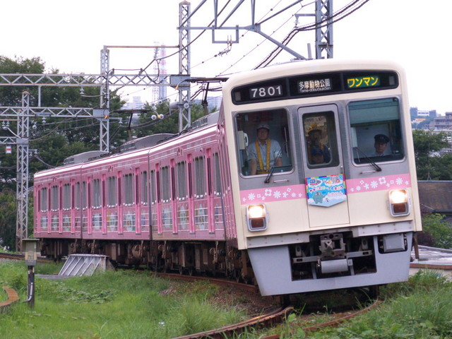 P1000169.jpg