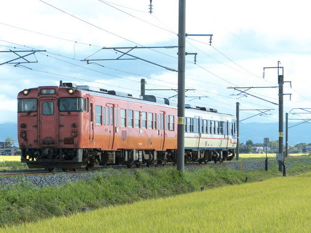 P1180041.jpg